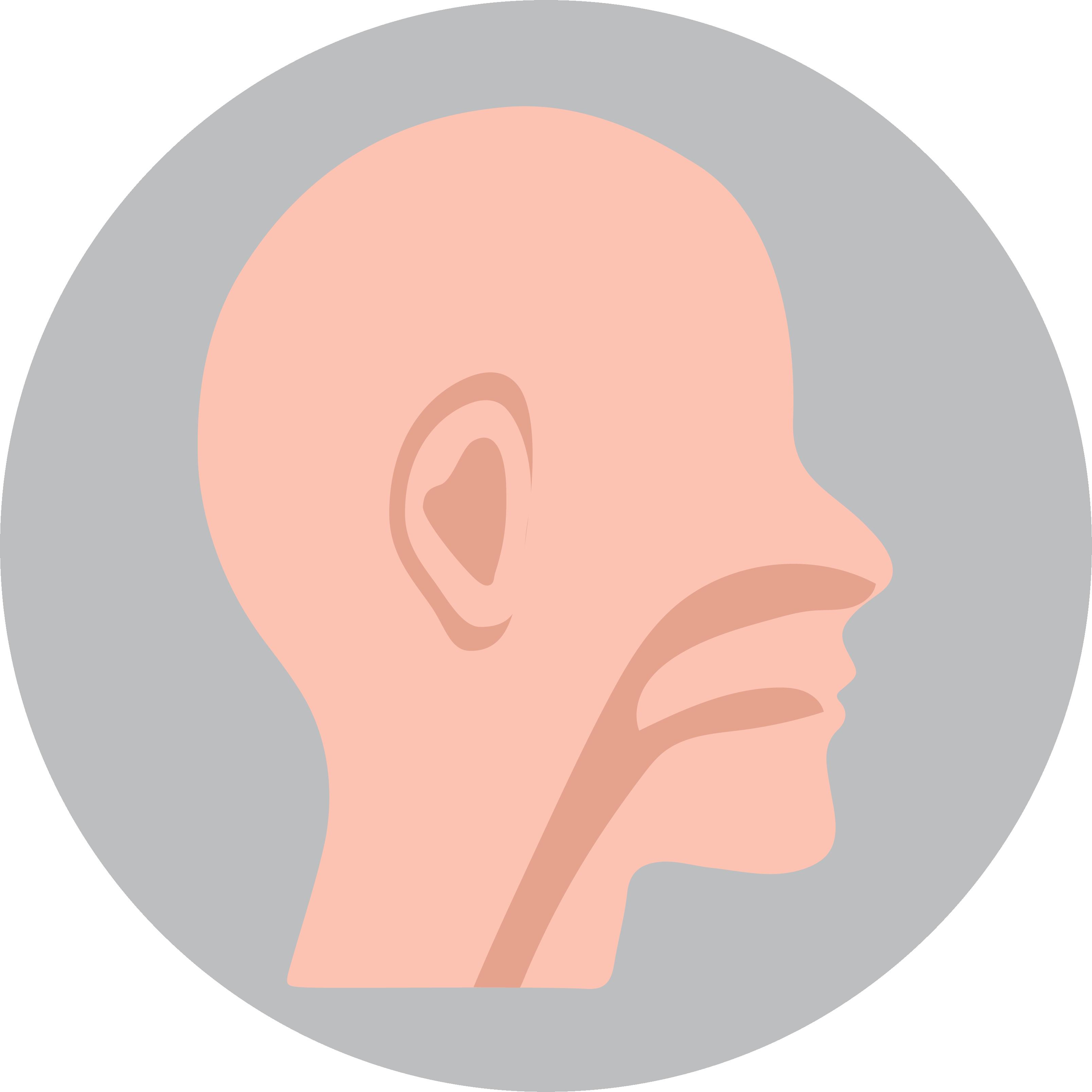 Ear, Nose, & Throat